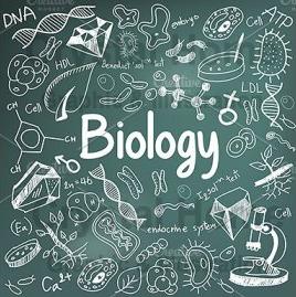 Biologi Farmasi